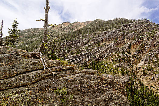 Cascades Granite by Peter J Sucy