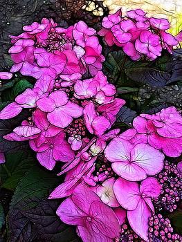 Cascades of Pink by Nick Heap