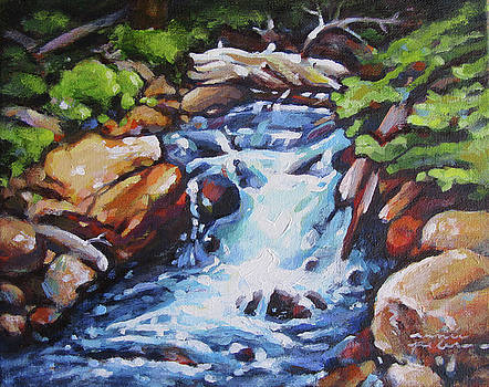 Cascades by Renee Peterson