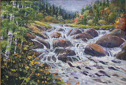 Cascading Creek by Richard Powell