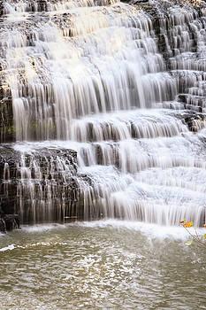Cascading Waterfall by Joni Eskridge