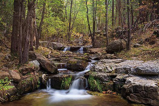 Saija Lehtonen - Cascading Waterfalls
