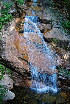 Cascading Waters  by Suzanne McDonald