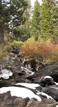 Larry Darnell - Cascasde Creek First Snow