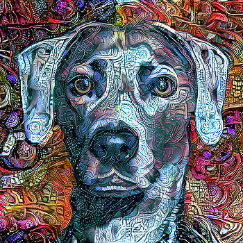 Peggy Collins - Cash the Blue Lacy Dog - Cropped