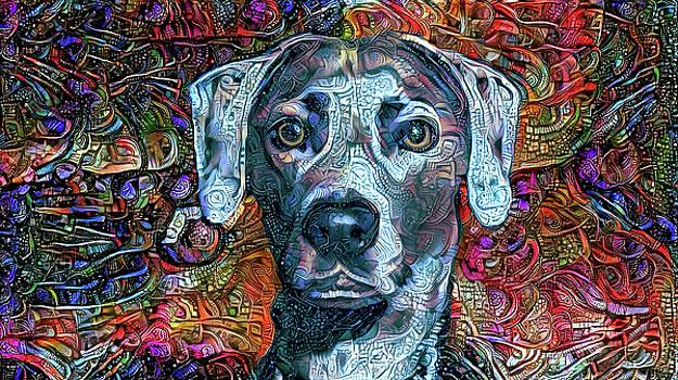Peggy Collins - Cash the Blue Lacy Dog