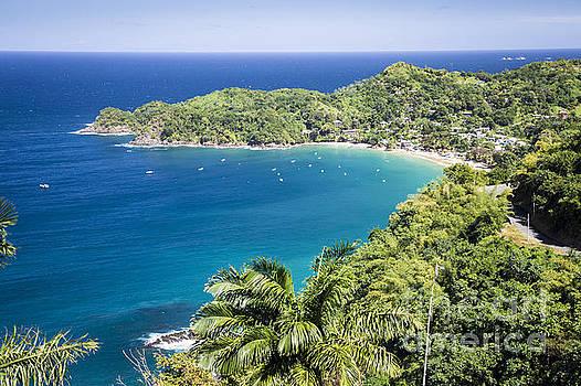 Castara Bay Lookout, Tobago by Hugh Stickney