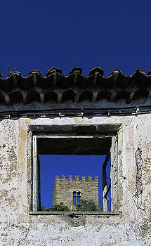 Castelo Branco by Bogdan Petrila
