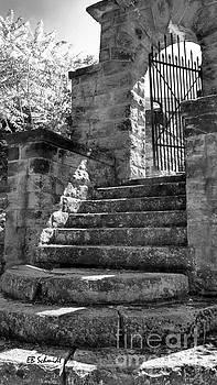 Castle Gate by E B Schmidt