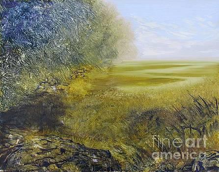 Marsh at Castle Hill by Vivian Haberfeld