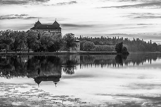 Castle in Black and White by Teemu Tretjakov