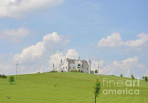 Castle on the Hill by Wanda-Lynn Searles