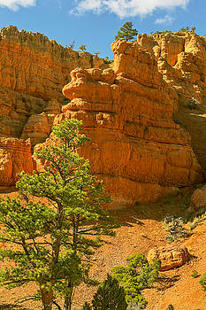 Casto Canyon by Peter J Sucy