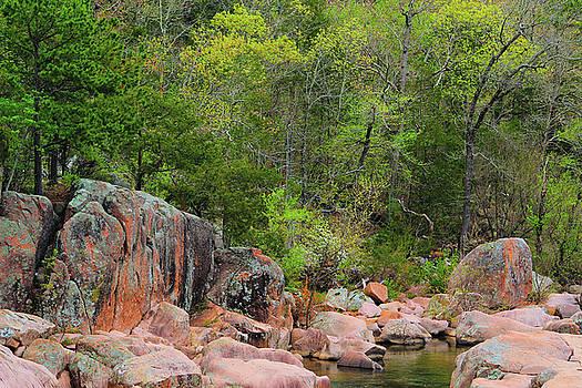 Castor River Canyon by Greg Matchick