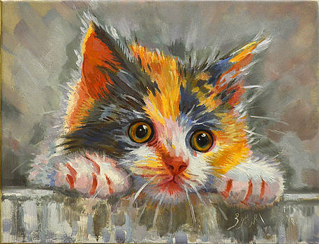 Cat by Ahmed Bayomi