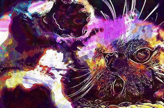 Cat Animal Kitten Pet Mieze  by PixBreak Art