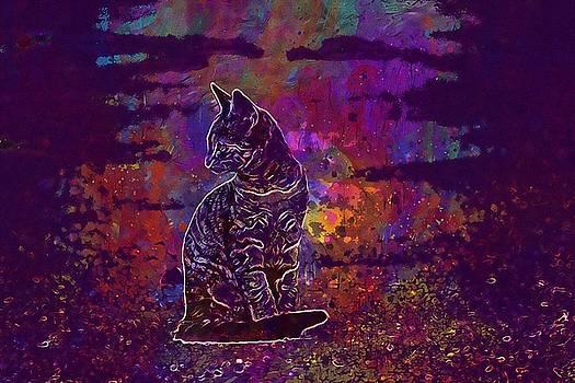 Cat Cat Baby Kitten Mackerel  by PixBreak Art