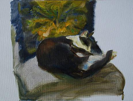 Cat Decor by Ann Bailey