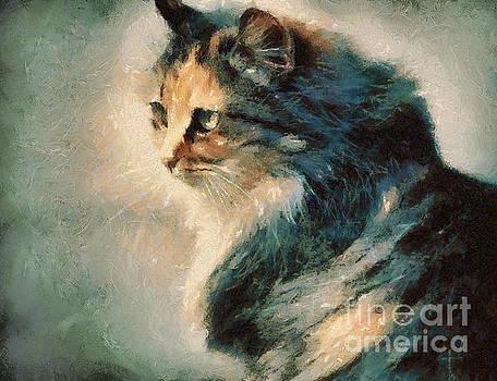 Dimitar Hristov - Cat