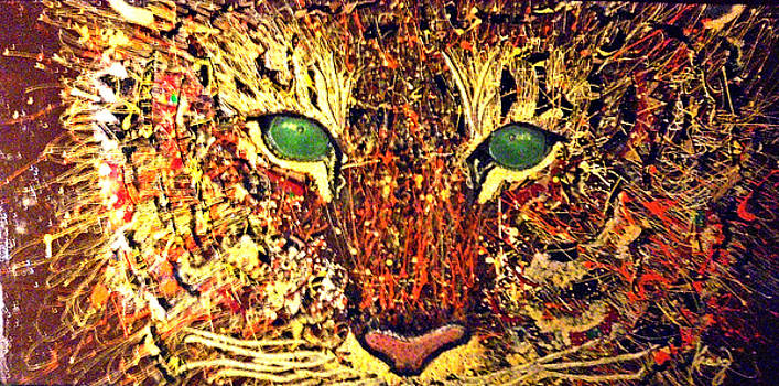 Cat Eyes Abstract by Craig King