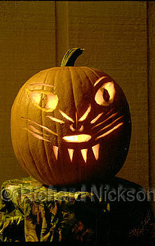 Cat Face Jack-o-lantern by Richard Nickson