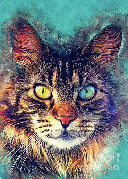Cat Friday by Justyna JBJart