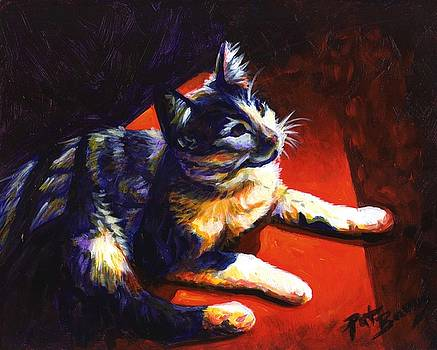 Cat Glow by Pat Burns
