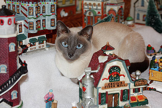 Cat in Christmas Village by Sally Weigand