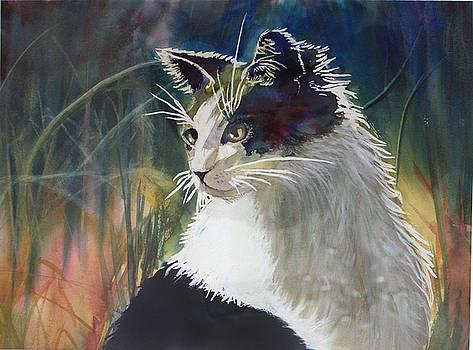 Cat in weeds by Carol Rhodes