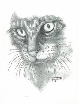 Cat My Little Annie Girl by Sharon Blanchard