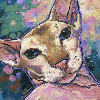 Cat by Nadi Spencer