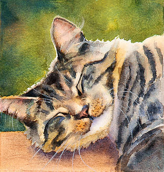 Cat Nap by Bonnie Rinier
