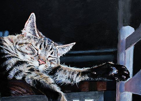Christopher Reid - Cat Nap