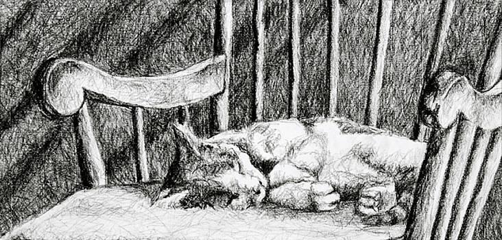 Cat Nap I by Robert Decker