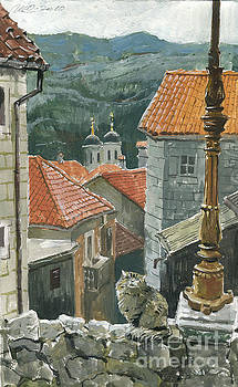 Cat Of The Town Of Kotor by Sakurov Igor
