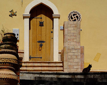 Cat on Steps Catania Italy by John Gilroy
