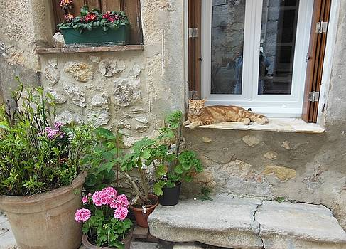 Cat Relaxing in St Paul de Vence by Marilyn Dunlap