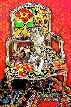 Judith Barath - Cat Sitting in a Chair