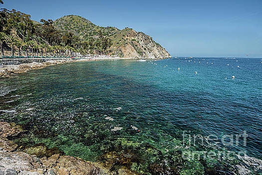 Catalina Bay by Jim Chamberlain