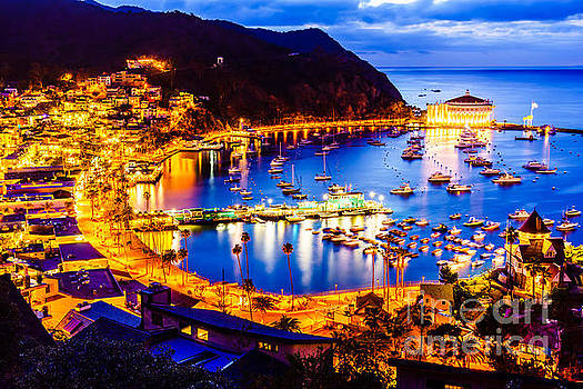 Catalina Island Avalon Bay at Night by Paul Velgos