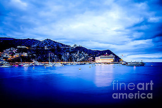 Catalina Island Avalon Bay at Night Picture by Paul Velgos