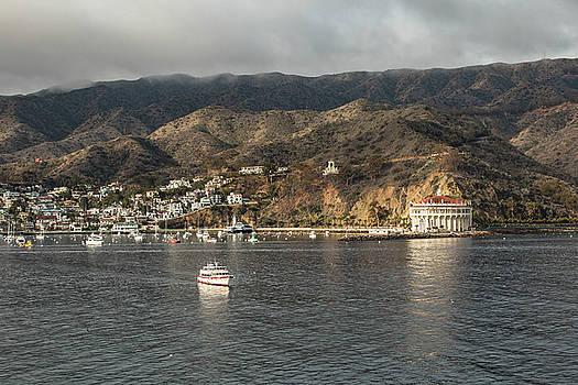 Rosemary Woods-Desert Rose Images - Catalina Island CA-IMG_886416