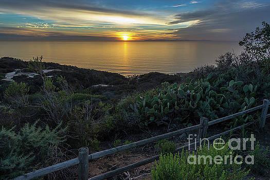 Catalina Island Sunset by Gregory Schaffer
