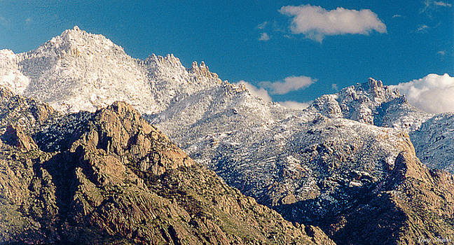 Catalina Snowscape by Greg Taylor