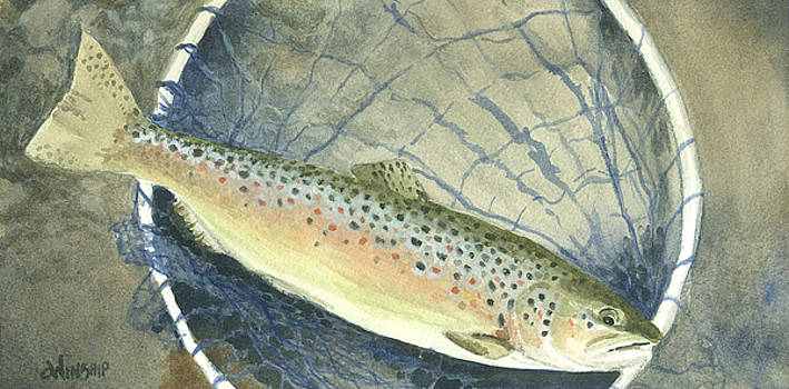 Catch and Release by Christine Winship