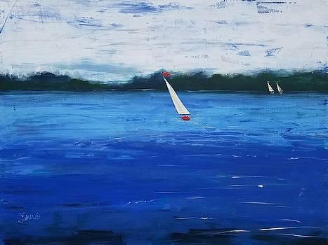 Catch the Wind by Terri Einer