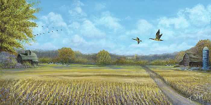 Catching The Flock by Tammy Olson