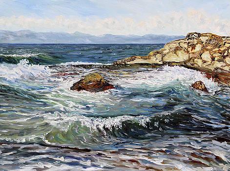 Catching Waves at Georgina Point Mayne Island BC by Terrill Welch
