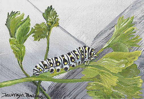 Caterpillar by Taunya Bruns