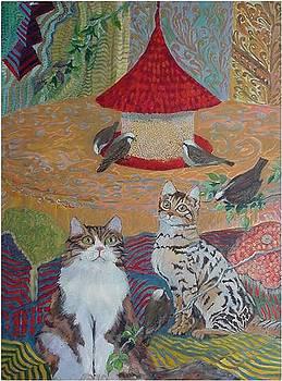 Catfeeder by Aletha Jo Lane